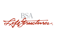 BSA Life Structures